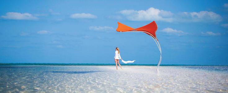Tuuci Stingray Outdoor Umbrella Series